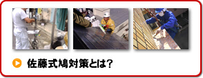 武田式鳩対策とは?|鳩(ハト)対策なら100%効果保証の武田環境衛生-東京 神奈川 埼玉
