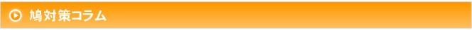 鳩対策 方法/鳩駆除 業者/鳩よけ ネット/東京・埼玉・横浜・川崎 株式会社ピーシープロテック