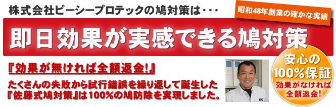 東京の鳩対策・駆除の業者/株式会社ピーシープロテック